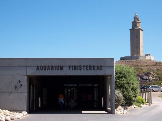 difair-aquario