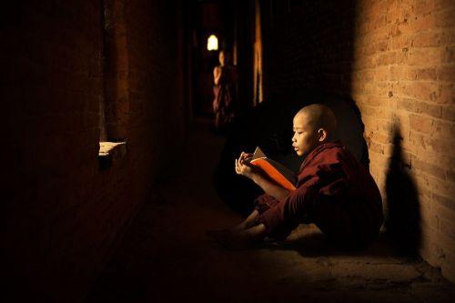 libros-budismo